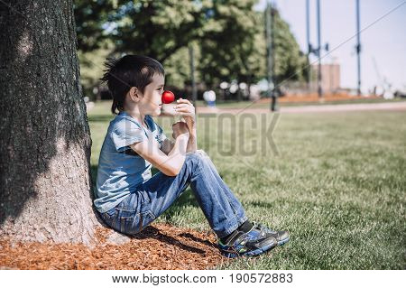 Boy tries on clown's red nose. The child sits under a tree. The concept of an outdoor party. red nose day