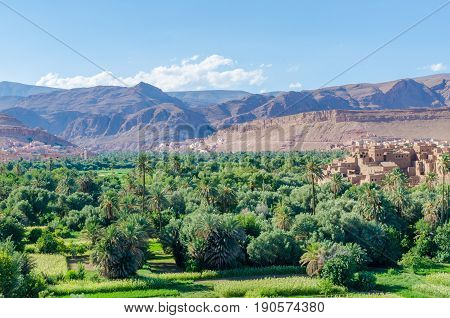 Beautiful lush green oasis with buildings and mountains at Todra Gorge, Morocco, North Africa.