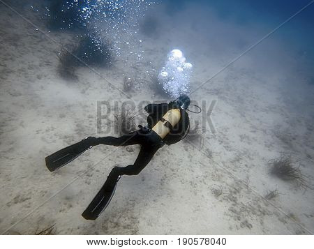 Diver Underwater. Scuba diving blue water. Scuba