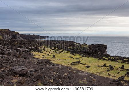 Melancholic Iceland Landscape With Dark Volcanic Lava Fields, Green Thick Moss And View Over Atlanti