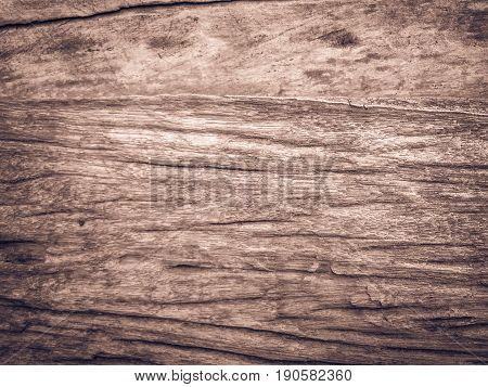 Real Natural Wood Texture Background Texture.architecture Backdrop Board Color Light Vintage Wall Wh