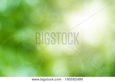 Blurred nature background.Backdrop with color and bright sun light. Summer holidays concept.bokeh background or Christmas background.Green Energy.Christmas Blurred.white sun spring pattern color art.