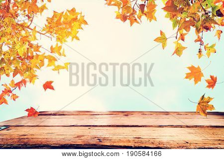 Top of wood table with beautiful autumn maple tree on sky background - Empty ready for your product display or montage. Concept of background in fall season