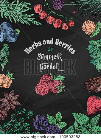 chalk herbs, berries summer garden, dewberry, mulberry, raspberry, strawberry, blueberry, cloud berry, herbs, basil, chives, coriander,  oregano,  rosemary, on chalkboard background