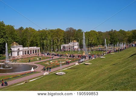Petergof, Russia - June 5, 2017: Voronikhinsky colonnades at Pertergof Palace. They close the parterres in front of the Great Palace on the north side and accent the entrance to the Sea Canal.