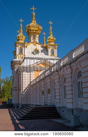 Church of Peter and Paul. The Palace Church. The domes are gilded and richly decorated. The domes are crowned with crosses. Peterhof, Russia.