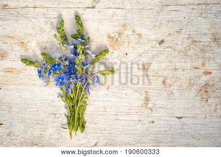 Bunch Of Forget Me Not Flowers On A Wooden Background With Copy Space For Your Text