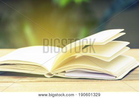 Open book on a wooden table. Natural blur green background. Education conceptVintage tone.