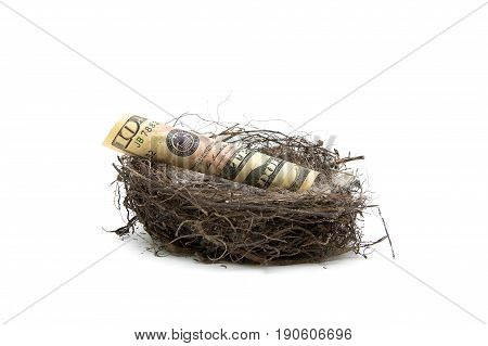 Money lies in a bird's nest on a white background. Horizontal photo.