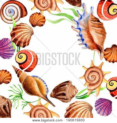Watercolor summer beach seashell tropical elements frame. Underwater creatures: mollusk, cockleshell, scallop and others.