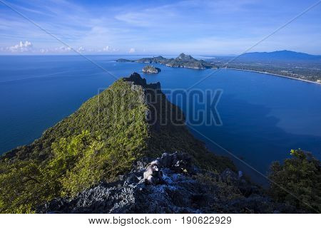 Amazing summer landscape with mountains sea blue sky sun and beautifulViewpoint Prachuap Bay.The dusky leaf monkey spectacled langur or spectacled leaf monkey.