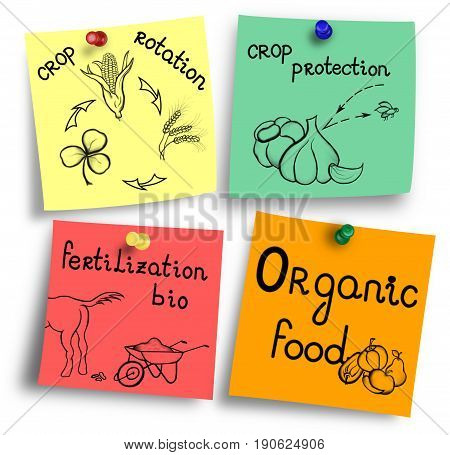 Essentials of organic food production on a colorful notes.