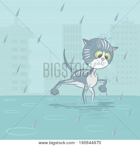 Illustration in the form of a wet cat under the rain