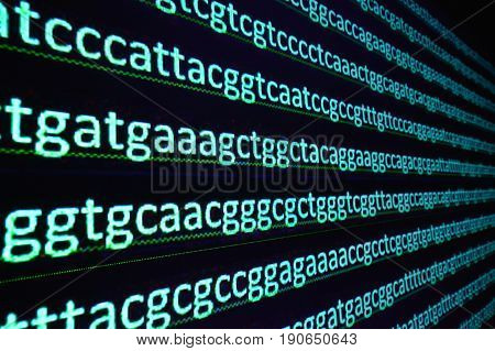 Sequencing the gene. Sequence of nucleotide bases in the decoded DNA molecule.