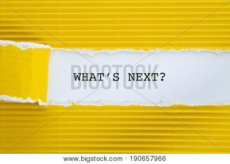 WHAT IS NEXT word written under torn paper .