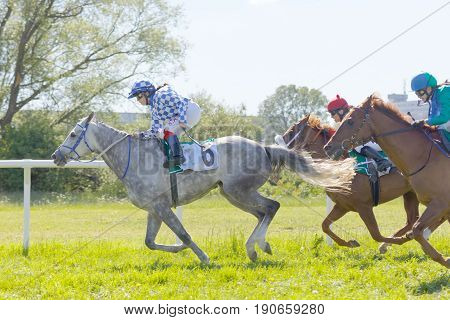 STOCKHOLM SWEDEN - JUNE 06 2017: Low angle photo of tough fight between jockeys riding gallop arabian race horses at Nationaldags Galoppen at Gardet. June 6 2017 in Stockholm Sweden