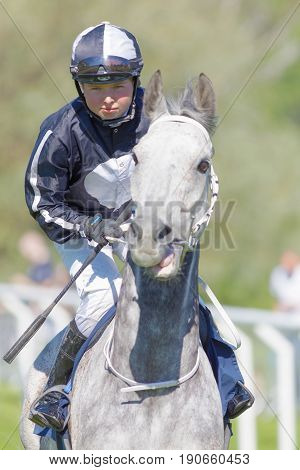 STOCKHOLM SWEDEN - JUNE 06 2017: Closeup of jockey with a whip riding a gray gallop arabian race horse at Nationaldags Galoppen at Gardet. June 6 2017 in Stockholm Sweden