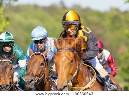STOCKHOLM SWEDEN - JUNE 06 2017: Closeup of coloful jockeys on gallop arabian race horses storming ahead at Nationaldags Galoppen at Gardet. June 6 2017 in Stockholm Sweden