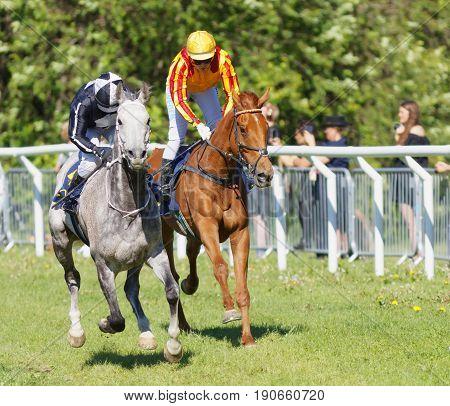 STOCKHOLM SWEDEN - JUNE 06 2017: Two jockeys side by side riding gallop arabian race horses at Nationaldags Galoppen at Gardet. June 6 2017 in Stockholm Sweden