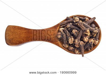 Spice cloves on wooden spoon isolated on white background.