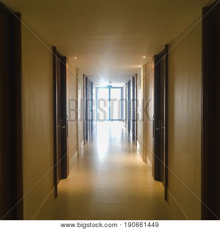 Corridor with lots of dark brown doors. White walls and ceiling concrete floor. Concept of hotel lobby.