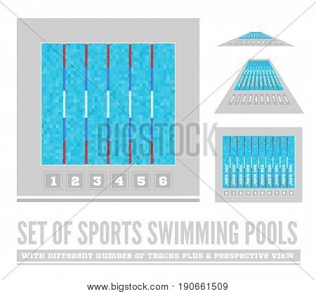 Set of sports swimming pools with different number of tracks plus a perspective view. Vector illustration