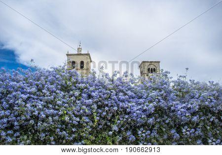 Church of Santa Maria la Mayor towers Trujillo Spain. View from downtown street full of violet flowers