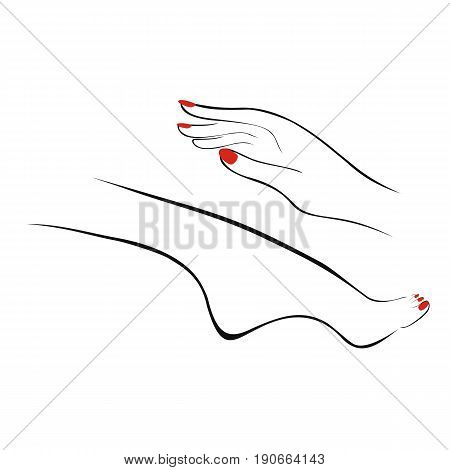 Female hand and leg with manicure pedicure. Vector illustration.