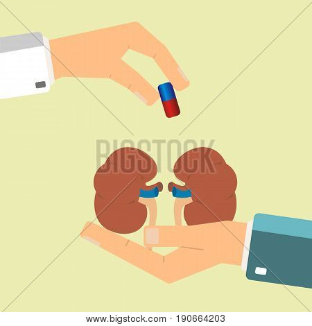 Healthcare concept. Doctor's hand give medical pill for treatment human kidneys. Vector illustration.