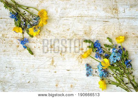 Frame From Two Small Bouquets Of Wild Flowers, Buttercup And Forget Me Not, At The Opposite Sides Of