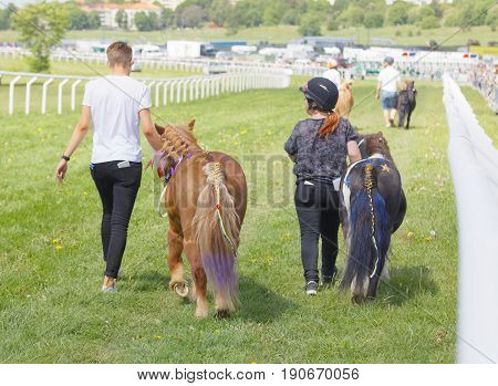 STOCKHOLM SWEDEN - JUNE 06 2017: Rear view of young jockeys walking with pony gallop race horses at Nationaldags Galoppen at Gardet. June 6 2017 in Stockholm Sweden