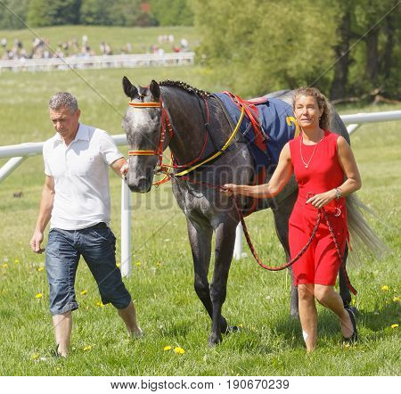 STOCKHOLM SWEDEN - JUNE 06 2017: Man and woman in red dress leading a gallop arabian race horse in the vault at Nationaldags Galoppen at Gardet. June 6 2017 in Stockholm Sweden