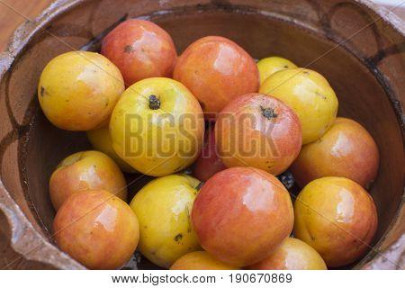 Closeup Spondias purpurea jocote plum fruits in rustic Mexican clay bowl
