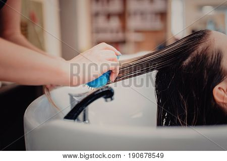 Stylist Brushing Woman Hair In Salon Pool