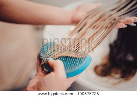 Stylist Brushing Woman Hair In Salon Pool