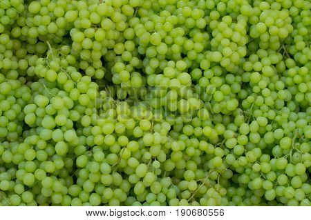 White Wine Grapes In A Market. Top View. Close-up