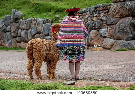 Cusco, Peru- March 17, 2017: Peruvian women with Alpaca near Cusco Peru