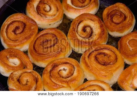 Little rolls with a cinnamon with selective focused. Little cinnamon pastries.
