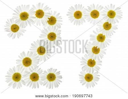 Arabic Numeral 27, Twenty Seven, From White Flowers Of Chamomile, Isolated On White Background