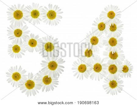 Arabic Numeral 54, Fifty Four, From White Flowers Of Chamomile, Isolated On White Background