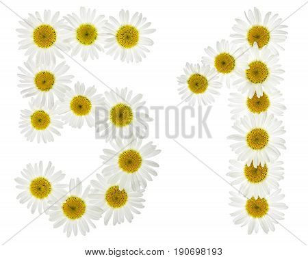 Arabic Numeral 51, Fifty One, From White Flowers Of Chamomile, Isolated On White Background