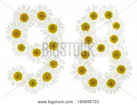 Arabic Numeral 98, Ninety Eight, From White Flowers Of Chamomile, Isolated On White Background