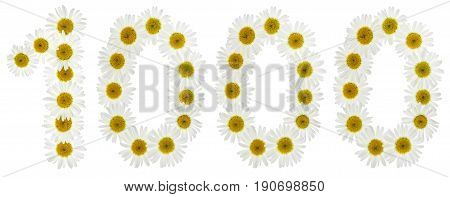 Arabic Numeral 1000, One Thousand, From White Flowers Of Chamomile, Isolated On White Background