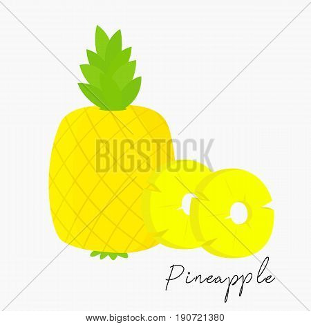 pineapple and slices of pineapple vector on white background