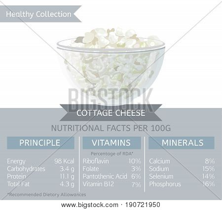 Cottage cheese health benefits. Vector illustration with useful nutritional facts. Essential vitamins and minerals in healthy food. Medical, healthcare and dietary concept.