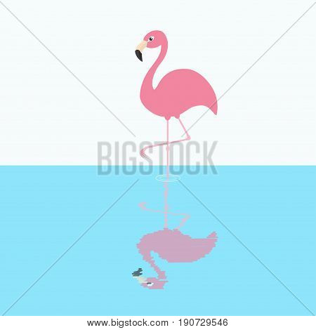 Pink flamingo standing on one leg. Circles on the water shadow. Exotic tropical bird. Zoo animal collection. Cute cartoon character. Decoration element. Flat design. White blue background. Vector