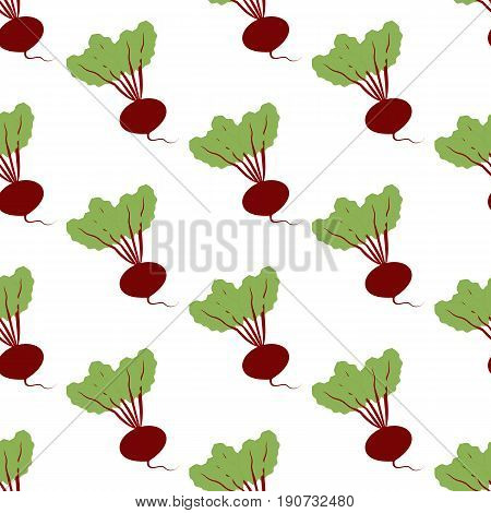 Beet Vegetable pattern on the white background. Vector illustration