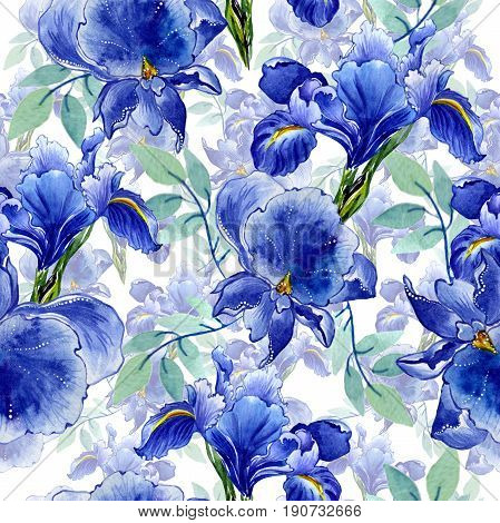 Wildflower iris flower pattern in a watercolor style isolated. Full name of the plant: irises. Aquarelle wild flower for background, texture, wrapper pattern, frame or border.
