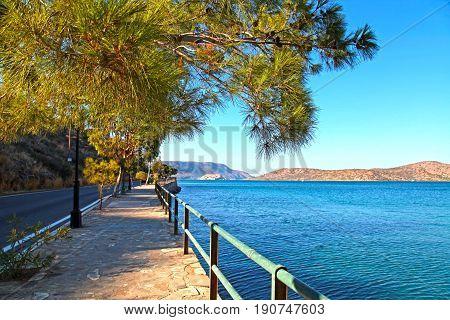 beautiful paved promenade pine tree branch and Mediterranean sea Elounda Mirabello bay Crete Greece. selective focus
