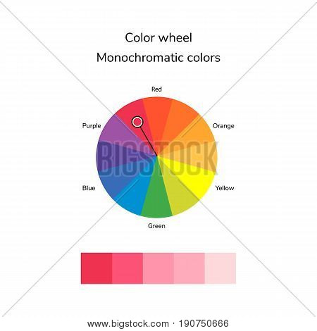Vector Illustration Of Color Circle, Monochromatic Color
